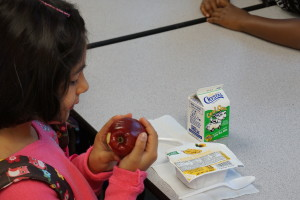 All BUSD K-8 students participate in the Universal Breakfast Program.