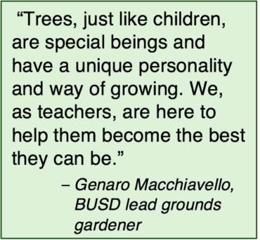 Text box with enlarged quote from lead gardener Genaro Macchiavello