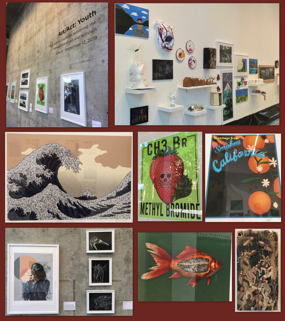 Images of Berkeley High student art at the David Brower Center